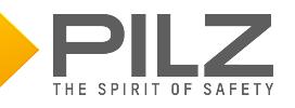 PILZ INTERNATIONAL